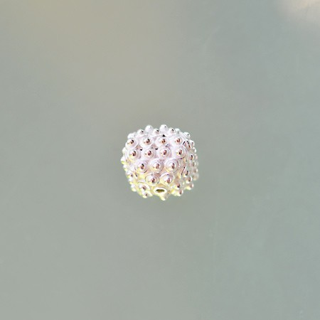 Bead with Granulation